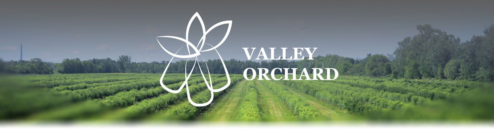 Valley Orchard